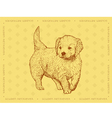 Dog Golden Retriever on a yellow ornamental backgr vector image
