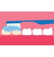 Brushing your teeth with toothpaste vector image