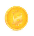 coin of virtual currency bitcoin the coin is vector image vector image