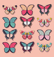 collection twelve colorful butterflies vector image vector image