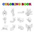 coloring book collection insects vector image vector image