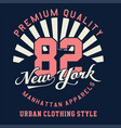 graphic premium quality new york vector image vector image