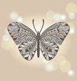 Insects butterfly bokeh vector image