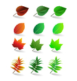 leaves set vector image vector image