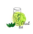 mint tea vector image