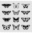 Set of butterflies silhouettes vector image vector image