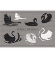 Set white and Black Swans Logo on wood background vector image vector image