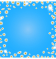 Summer daisies background vector image vector image