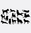 dog and wolf animal silhouette vector image