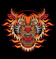 fire tiger head tattoo vector image vector image