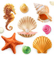 shell snail mollusk starfish sea horse 3d icon set vector image