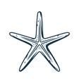 marine nautical oceanic star fish exotic starfish vector image vector image