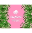 Paradise card with palms leaves Decorative image vector image vector image