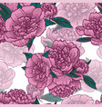 pink peonies seamless pattern vector image vector image