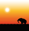 Silhouette of Elephant Standing in the Sunset vector image