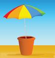 flowerpot with ummbrella vector image vector image