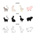 isolated object of breeding and kitchen icon vector image vector image