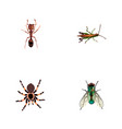 set of insect realistic symbols with wasp ant vector image