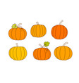 set of orange pumpkins autumn harvest of vector image