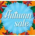 Autumn sale lettering design template vector image