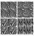 african zebra stripes seamless patterns vector image vector image