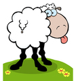 Cartoon Sheep Sticking Out His Tongue vector image