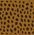seamless pattern with cheetah skin vector image