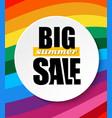 web banner big sale summer summer background vector image