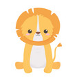 cute lion sitting animal cartoon isolated white vector image