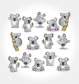Cartoon koala collection vector | Price: 1 Credit (USD $1)