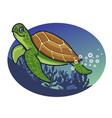cartoon of turtle character vector image