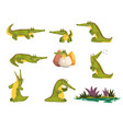 friendly crocodile in different poses set funny vector image