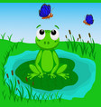 frog in the swamp vector image