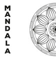 mandala indian emblem vector image