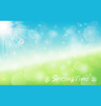 nature spring bokeh background with sunbeam vector image