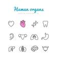 Set of human organs icons vector image vector image