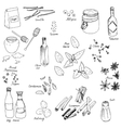 spice set vector image vector image