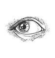 woman eye sketch vector image vector image