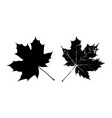 black leaves silhouette vector image vector image