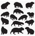 capybara animal silhouettes vector image