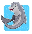 Cartoon dolphin vector image