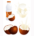 Coconut products vector image vector image