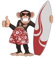 Funny monkey surfer