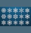 set paper snowflakes vector image