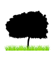 Tree And Grass vector image vector image