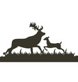 dark silhouette two deer running across lawn vector image