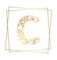 golden ornamental alphabet letter c font on white vector image