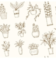 seamless pattern plants in a pot Hand drawn doodle