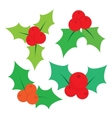 Set of Christmas holly leaves vector image vector image
