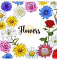 square banner various flowers with round place for vector image vector image